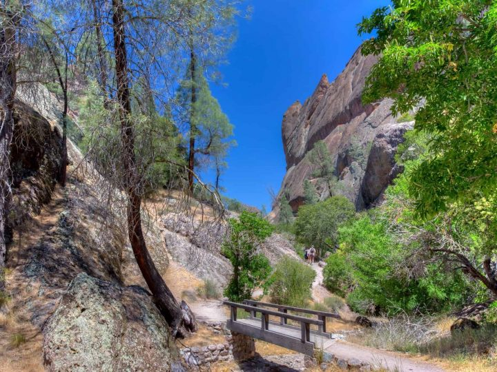 Things to do in Pinnacles National Park- Caves, Hikes & More!