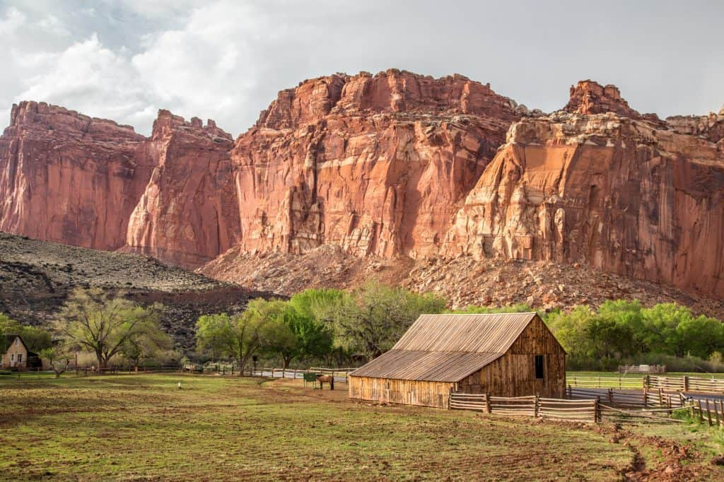 Things to so in Capitol Reef National Park include visiting the orchards in Fruita