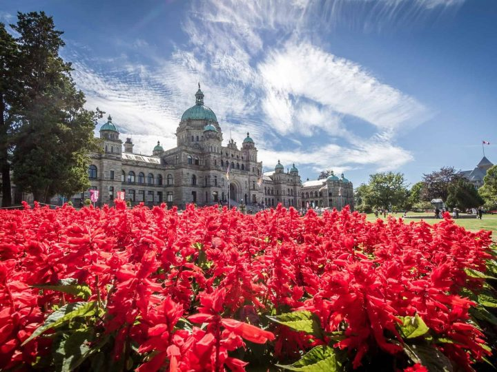 Top 10 Family-Friendly Things to do in Victoria, British Columbia