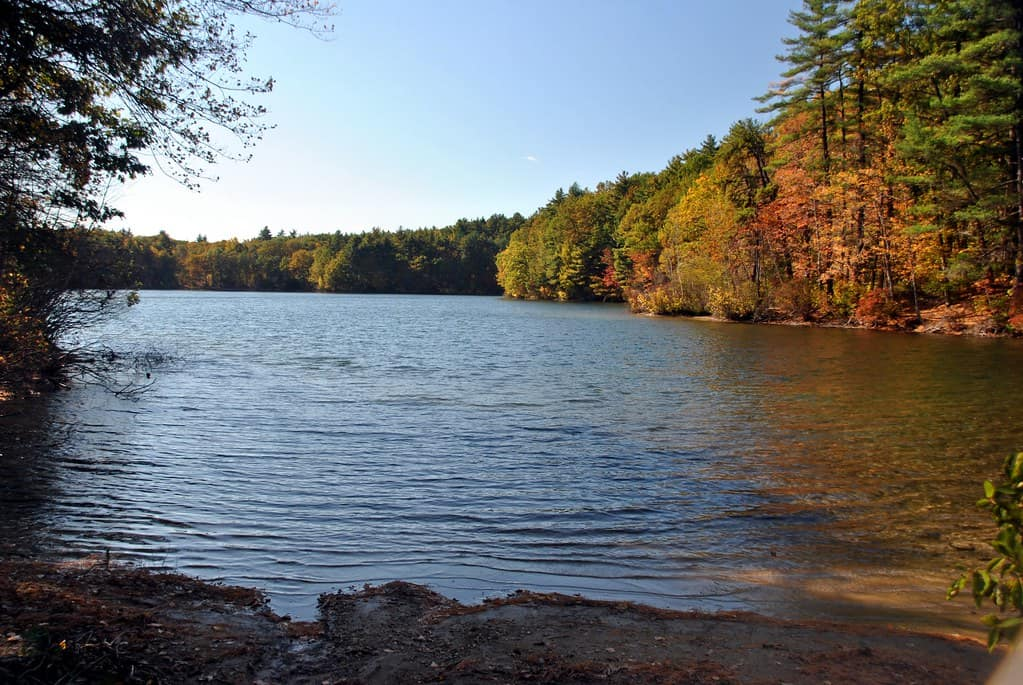 Walden Pond photo