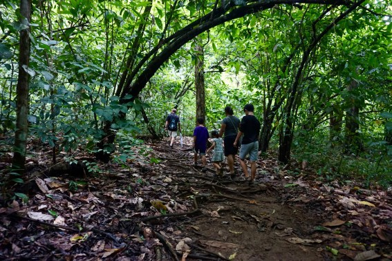 costa rica eco-lodge hike