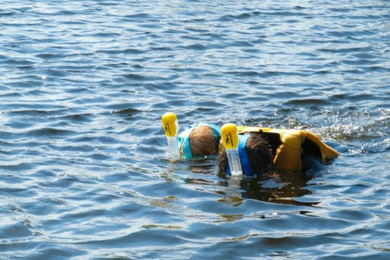 Sharklens snorkel