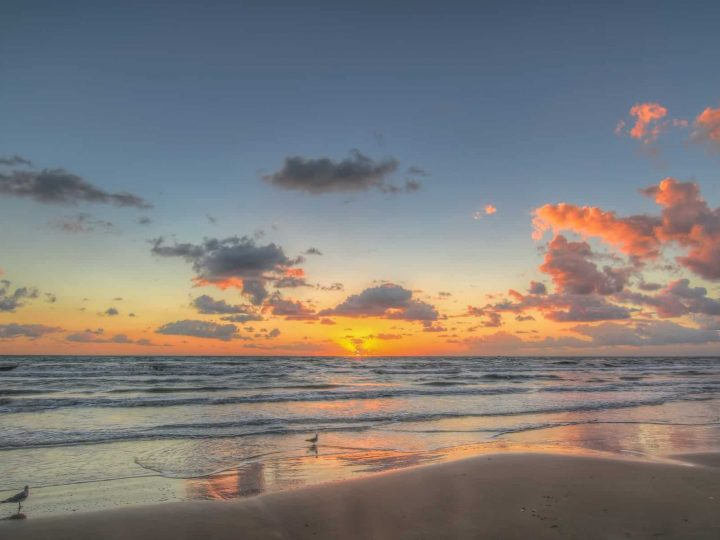 10 Fun Things to Do in South Padre Island