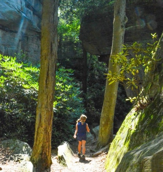 Things to Do in Morgantown, WV with Kids in the Summer 6