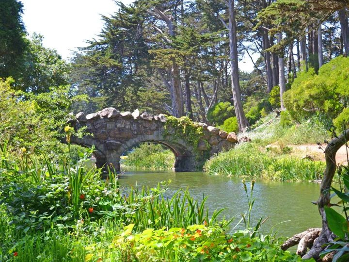 10 Things to do in San Francisco's Golden Gate Park