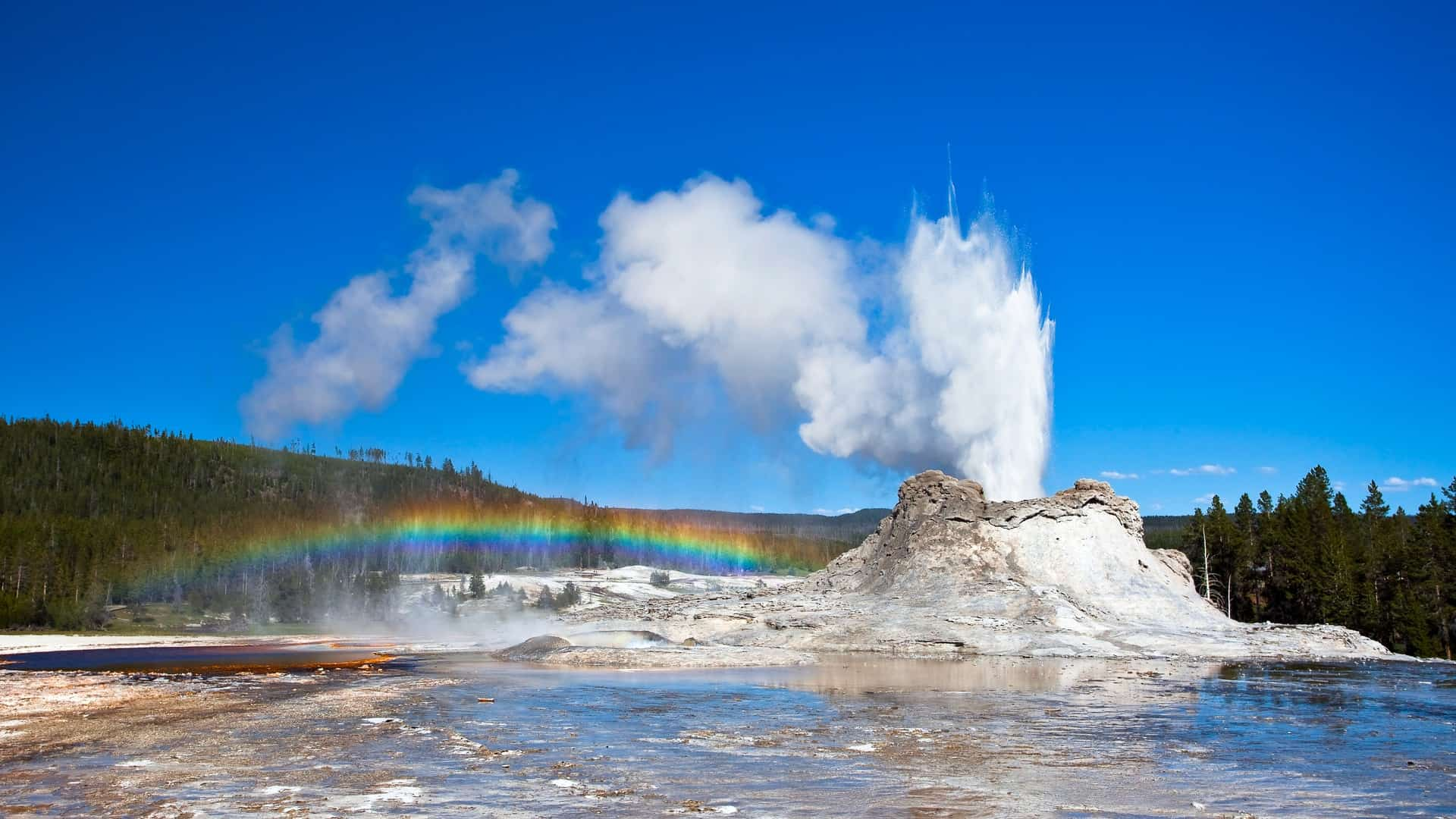 An Epic Road Trip from Chicago to Yellowstone with the Family