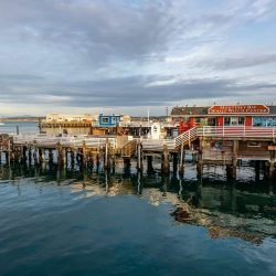 The 10 Best Things to do in Monterey with Kids