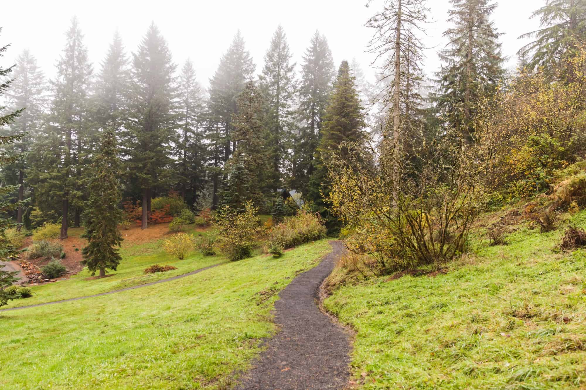 Favorite Places to Walk or Hike in Oregon