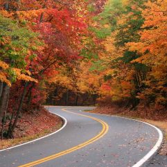 5 Best Places to View Fall Colors in Georgia