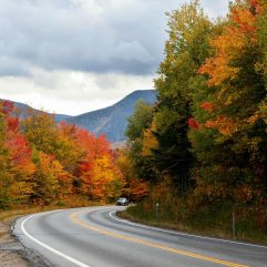 12 Spectacular New England Fall Road Trips for Families in 2021