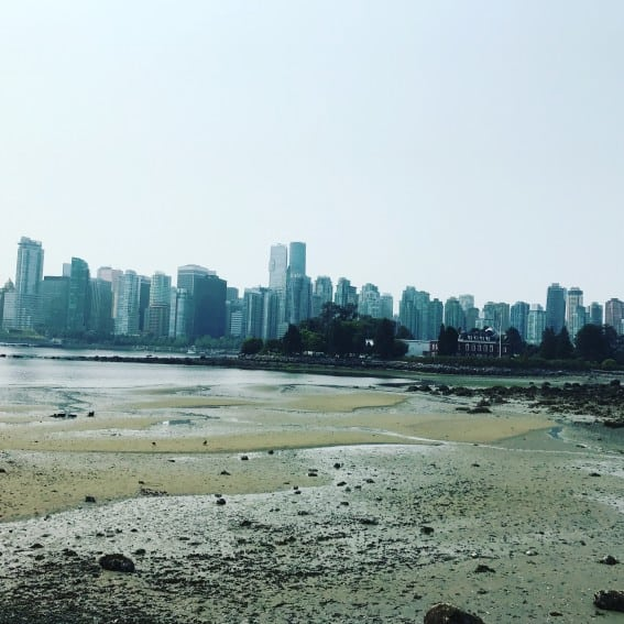 things to do in vancouver- see the skyline from Stanley Park