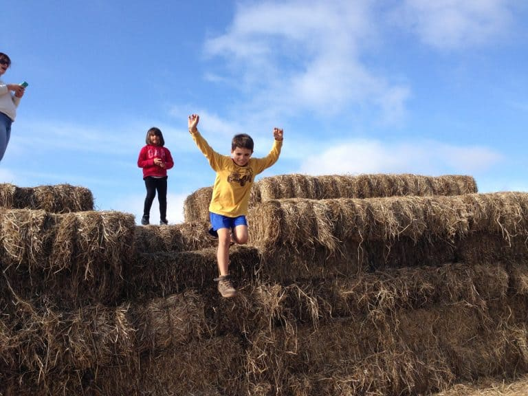Things to do in Santa Cruz with kids - Half Moon Bay