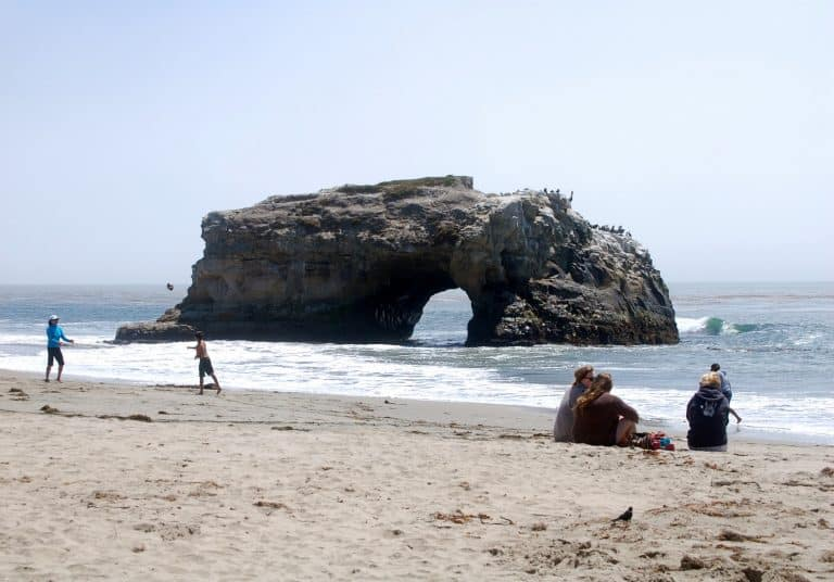 Things to do with kids in Santa Cruz - Natural Bridges State Beach
