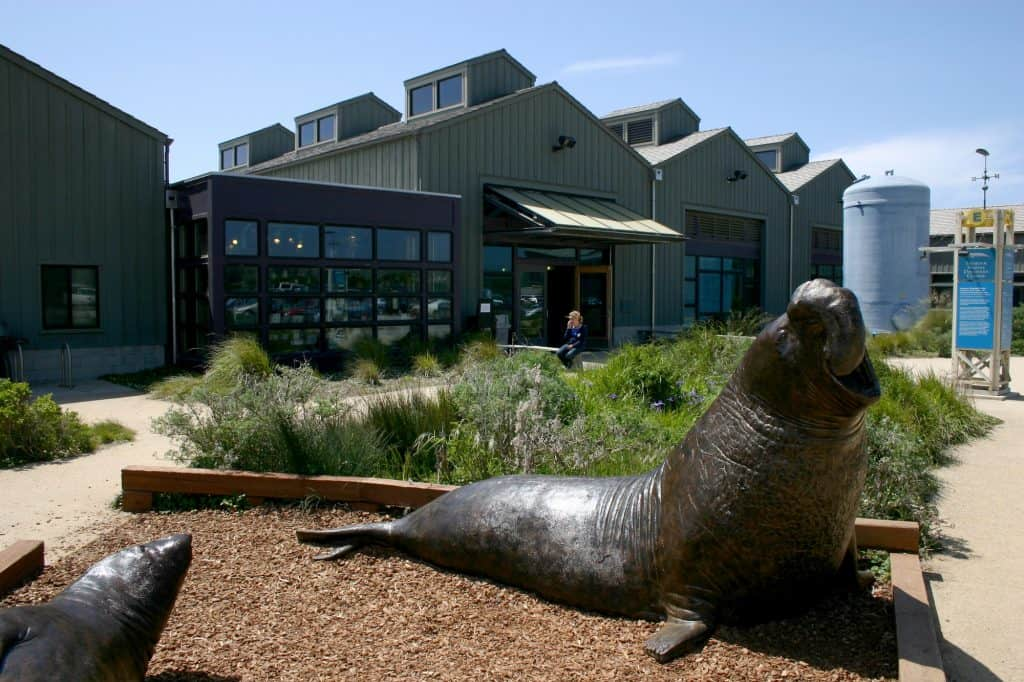 Things to do in Santa Cruz with kids - Seymour Marine Discovery Center