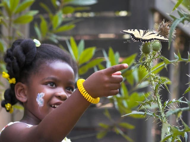 things to do in Atlanta with kids include the Chattahoochee Nature Center