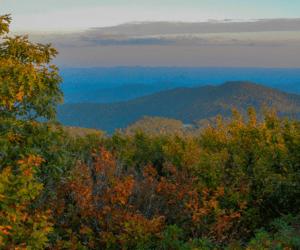 Asheville, NC FI