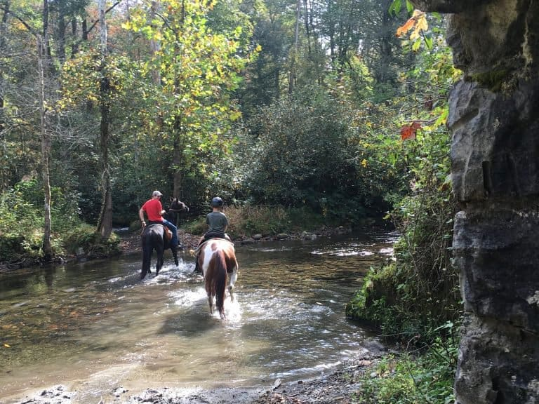 Horseback Riding Great Smoky Mountains National Park