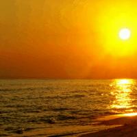 Panama Beach FI