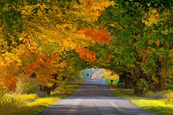 Fall color drives in Ludington, Michigan