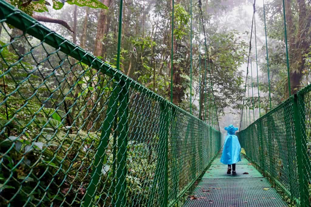 Monte Verde Cloud Forest Hanging Bridges