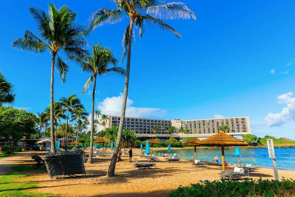 the best hotels for families in Oahu include the Turtle Bay Resort