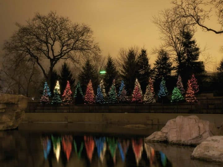 The Best Christmas Events in Chicago for Families 2020