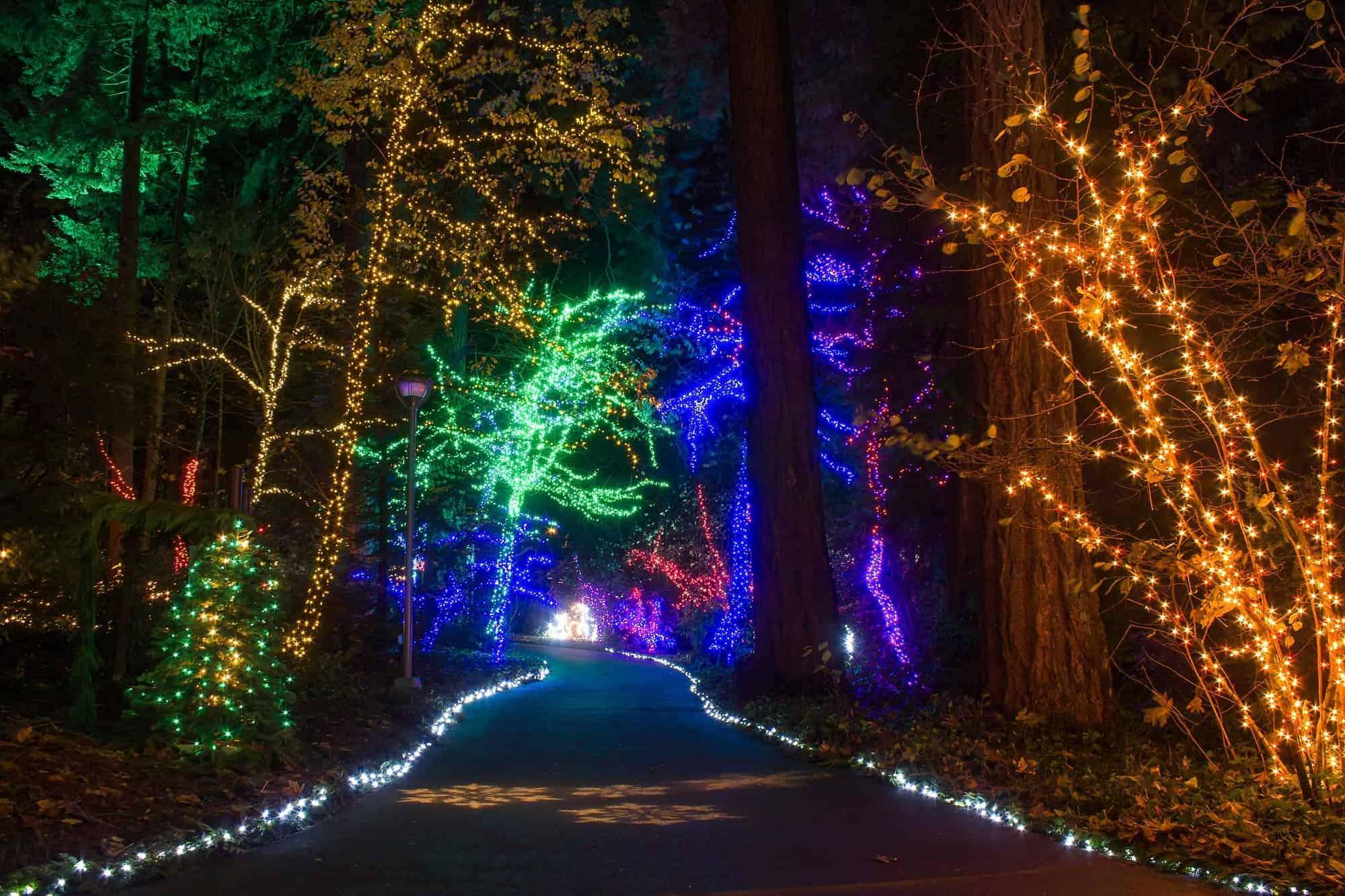 Best Christmas Lights in Portland, Oregon | 5 Holiday ...