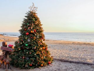 Top-Holiday-Events-Southern-California-Christmas-Tree-Beach-by-Michelle-McCoy-2