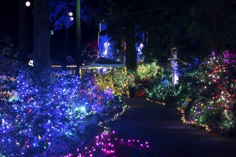 portland-christmas-lights-the-grotto