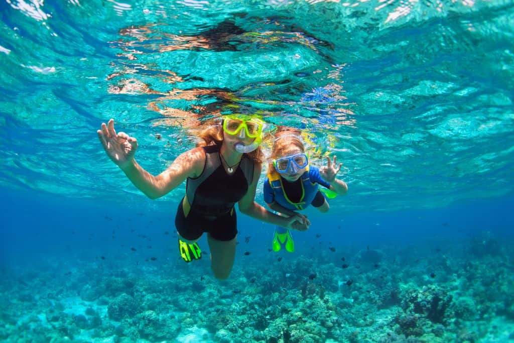 One of the most fun things to do in Hawaii is snorkel!