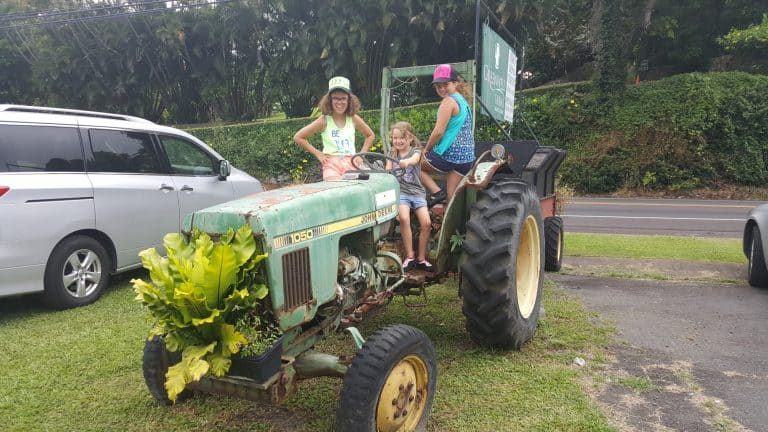 things to do on the big island with kids farm tours