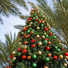 Best San Diego Christmas Events in 2020 for the Whole Family!