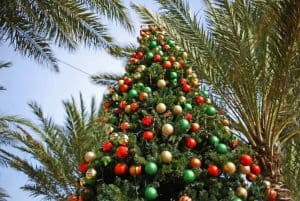 Christmas-San-Diego-Family-Kids-Tree-Palms-Shutterstock