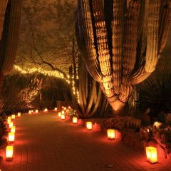 The Best Tucson Christmas Events in 2020