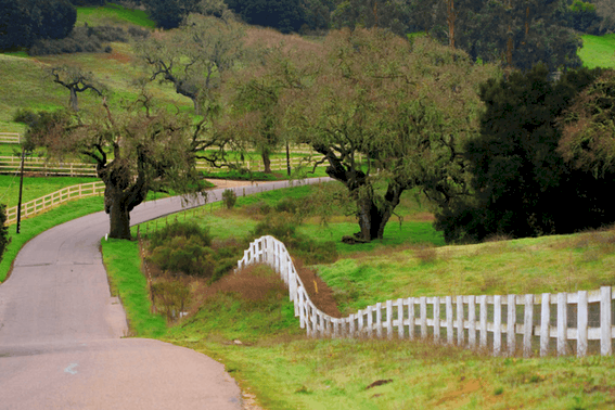 Buellton, in the Santa Ynez Valley, is the perfect pit stop for a north-south road trip in California on the 101