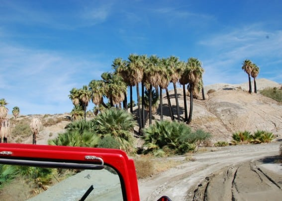 Things to do in Palm Springs with your family: Take a Jeep Tour
