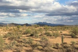Fort McDowell things to do