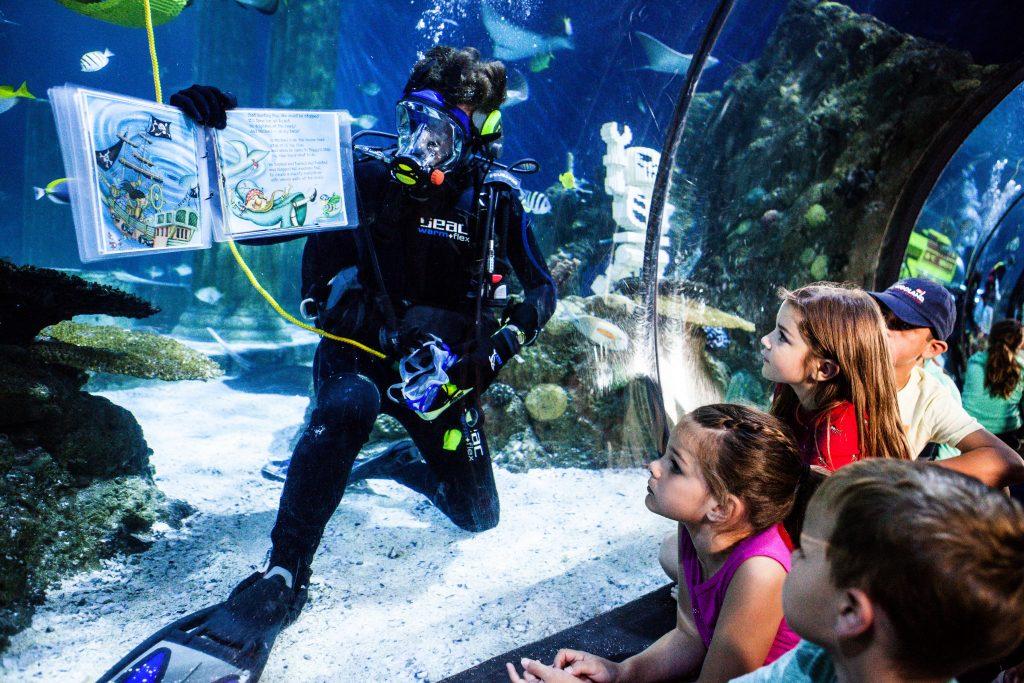 Legoland San Diego Sealife Aquarium