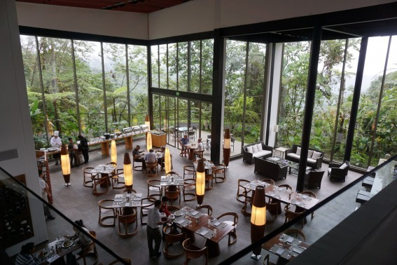 Mashpi Lodge: luxury meets adventure in Ecuador's cloud forest 4