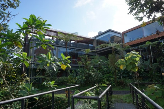 Mashpi Lodge: luxury meets adventure in Ecuador's cloud forest 5