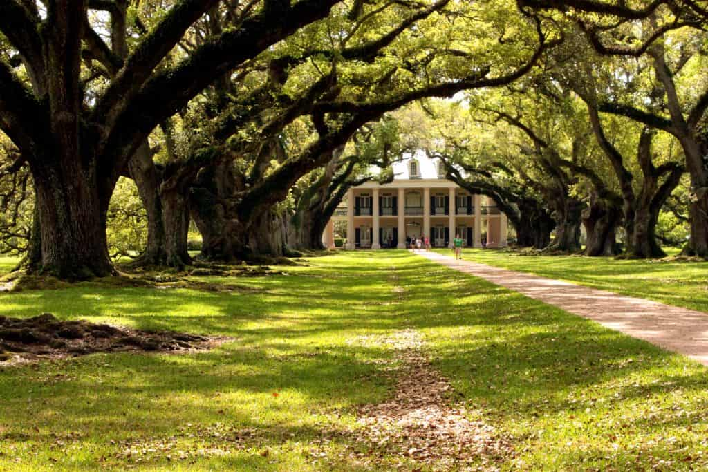 oak alley plantation things to do in new orleans with kids