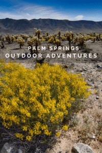 4 Great Outdoor Adventures in the Palm Springs Area 1