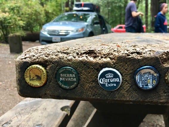 CA-Redwoods-Picnic-Table-Michelle-McCoy