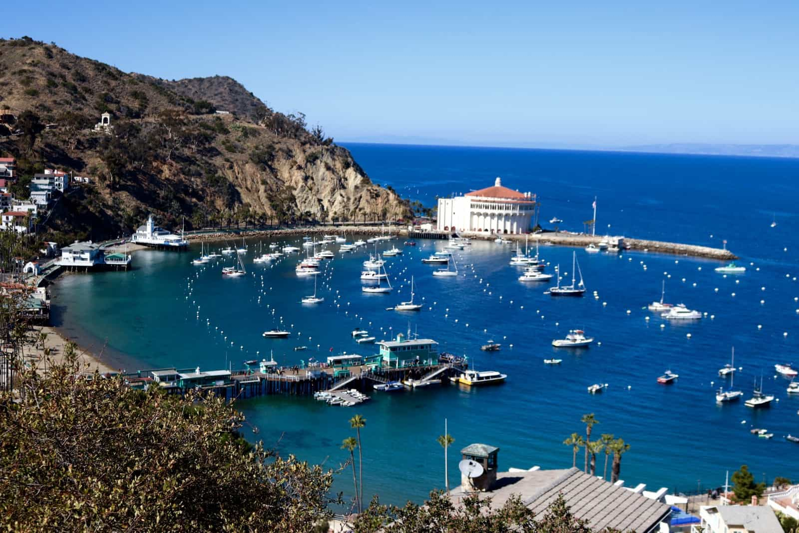 The best of Winter on Catalina Island picked by the family travel experts at Trekaroo.
