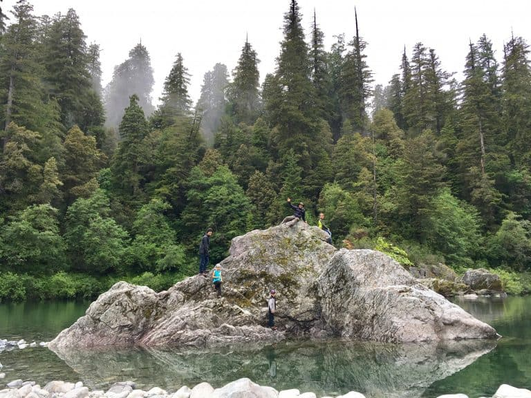 Jedediah-Smith-Redwoods-State-Park-River-by-Michelle-McCoy Redwood National Park with kids