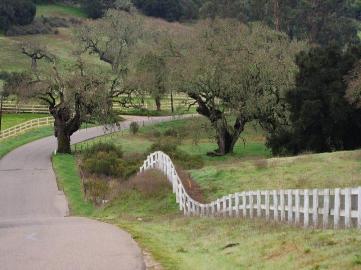 Buellton, California: More Than A Pit Stop