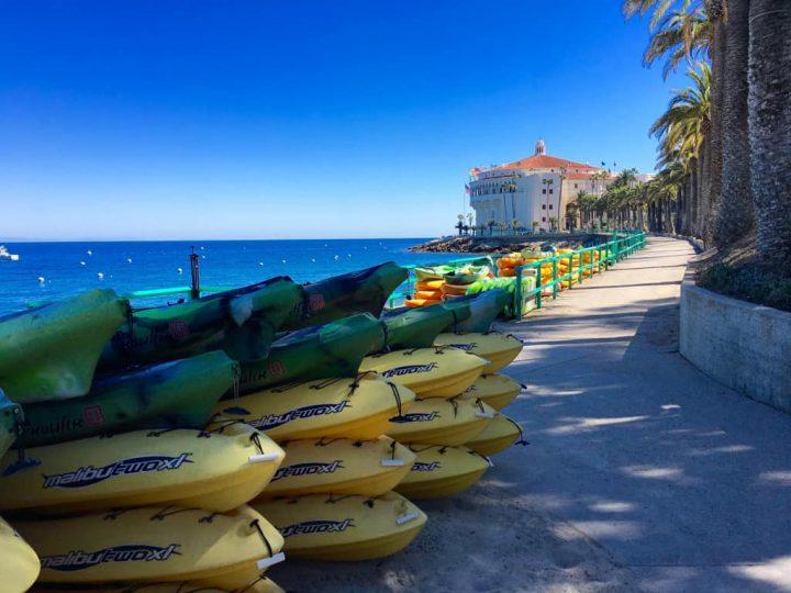Best of Winter on Catalina Island