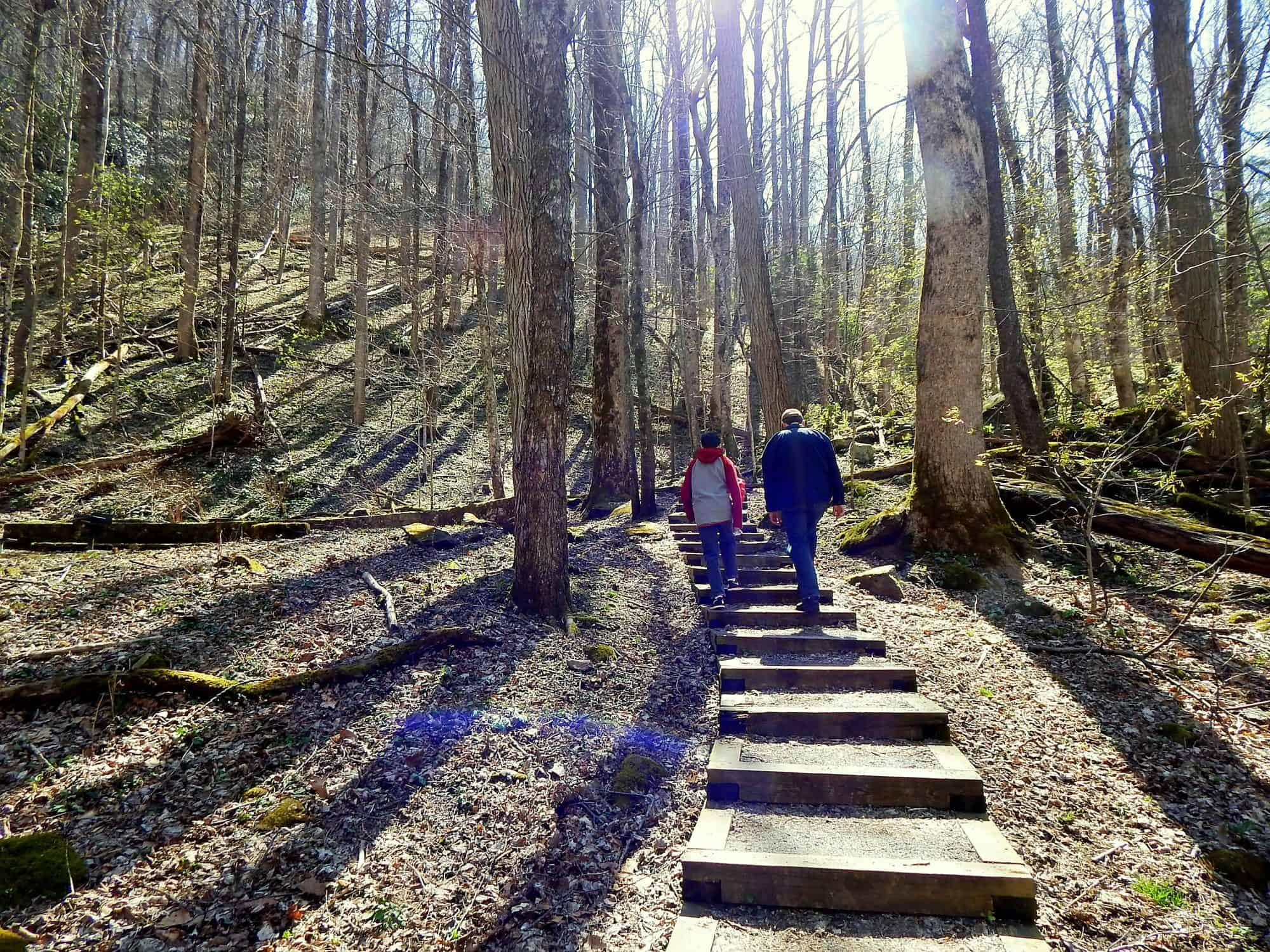 Best National Park Hikes with Kids 5