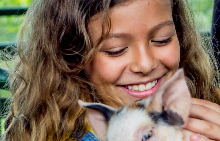 Costa Rica tours in Arenal eco-farm