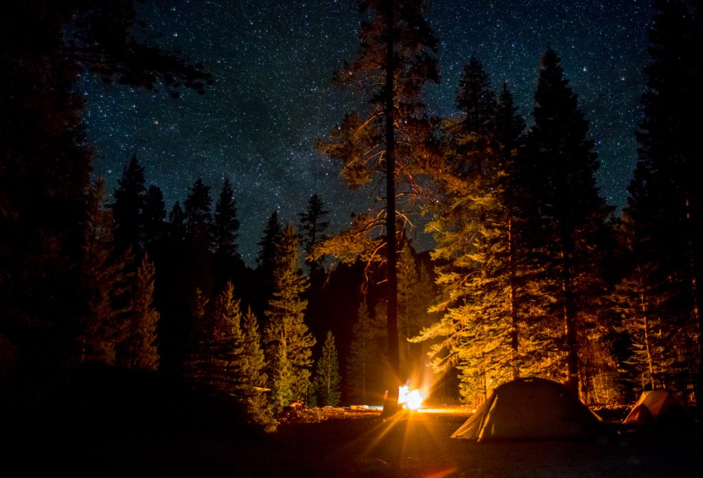 Things-to-do-in-Yosemite-national-park-with-kidsCamping-Stars-shutterstock